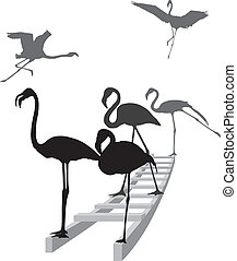 Flamingos on the ladder in grayscal