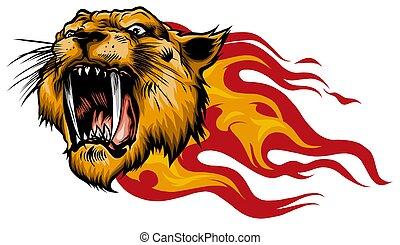 flamme, tigre, langues, tête