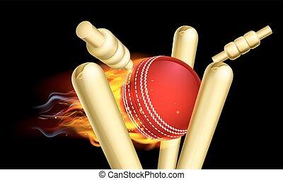 flammende, cricket bold, finder, wicket, stubbe