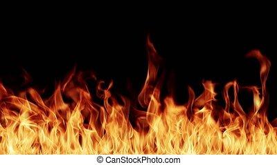 flammes, résolution, fond, ardent, élevé, noir