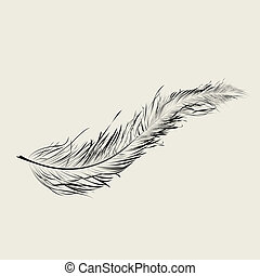 Flaoting feather - Graphic feather, art illustration