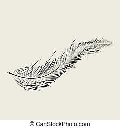 Graphic feather, art illustration
