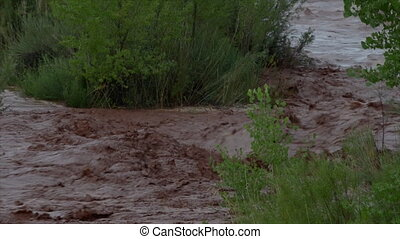 Flash Flood Waters flows through the Canyonlands Needle...