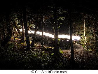 Flash of Light on The Appalachian Trail
