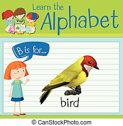 flashcard, b, pássaro, letra