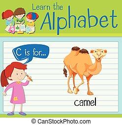 flashcard, c, lettera, cammello