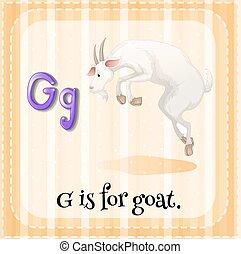 flashcard, carta g, cabra