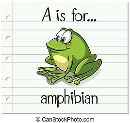 Flashcard letter A is for amphibian illustration
