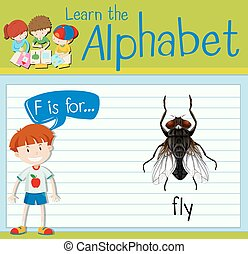 Flashcard letter F is for fly illustration