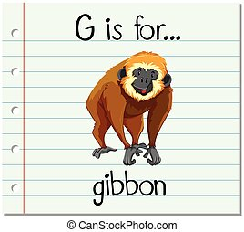 Flashcard letter G is for gibbon