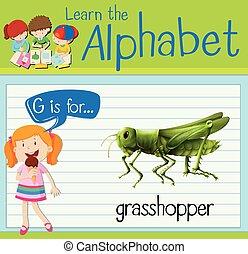 Flashcard letter G is for grasshopper illustration