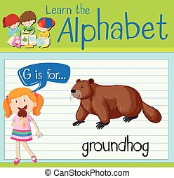 Flashcard letter G is for groundhog