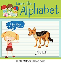 Flashcard letter J is for jackal illustration