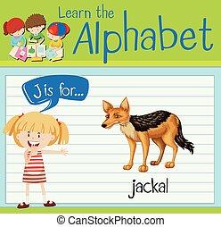 Flashcard letter J is for jackal illustration