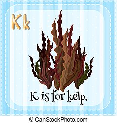 Flashcard letter K is for kelp