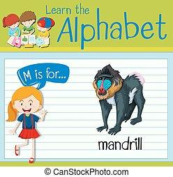 Flashcard letter M is for mandrill illustration