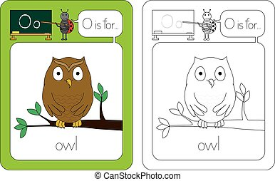 Flashcard for English language - letter O is for owl