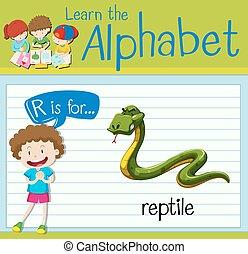 flashcard, reptil, r, carta