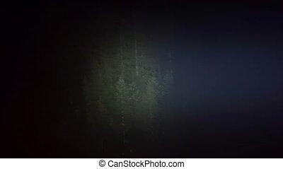 Flashlight illuminates the forest at night. Searchlight in the dark. Stock footage