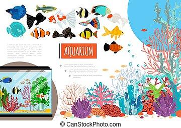 Flat Aquarium Elements Composition
