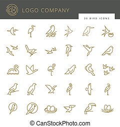 Flat birds icon set. Thin line style for icons.