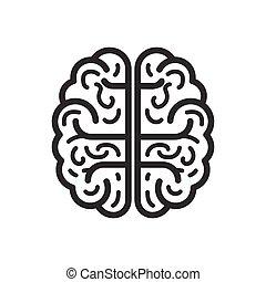 flat., cérebro, isolado, ilustração, experiência., vetorial, branca, ícone