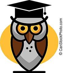 Flat education elements owl, diploma. Vector illustration.
