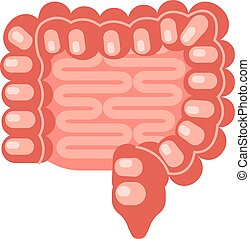 Flat Human intestine - Human intestine in a flat style. ...