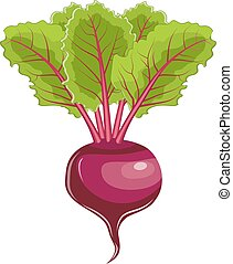 Flat icon beet with leaves.