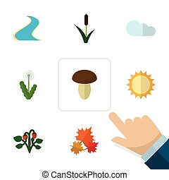 Flat Icon Nature Set Of Overcast, Floral, Cattail And Other Vector Objects. Also Includes Cloud, Maple, Canadian Elements.