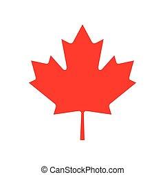 flat icon on white background Maple Leaf