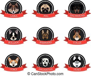 flat icons of pedigree dogs with the names