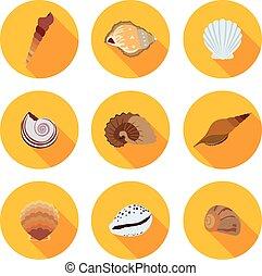 flat icons seashells