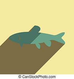 Flat icons with shadow of grass carp