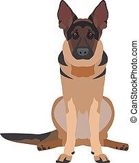 flat illustration of a dog