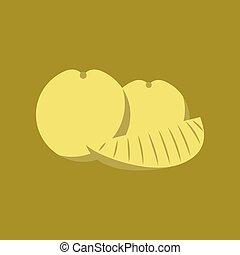 flat illustration on background of orange slice