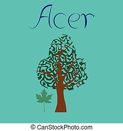 flat illustration stylish background plant Acer - flat...