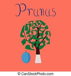 flat illustration stylish background plant Prunus - flat...