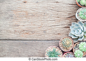 Flat lay gardening table with Cactus plants in pot and garden tools on grunge wooden table