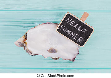Flat lay little seashell with sign Hello sea on turquoise background. White color seashell.