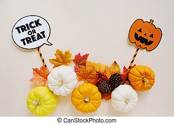 Flat lay of halloween props for party with pumpkins and autumn leaves, copy space, holiday concept