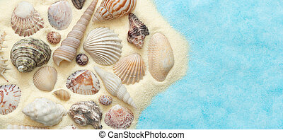 Flat lay of seashells with sand on blue background, concept of sea summer vacation at the beach, top view, copy space