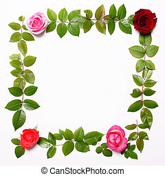 Flat lay - Square frame made of beautiful fresh roses and leaves
