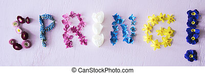 Flat Lay With Spring Flower Blossoms Building Word Spring, PInk Background