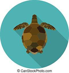 flat sea turtle icon