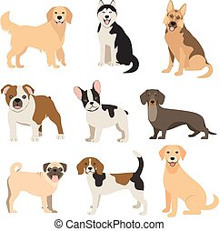 Flat style dogs collection. Cartoon dogs breeds set. Vector...