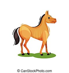 Flat vector design of brown horse standing on green grass, side view. Hoofed mammal animal. Wildlife theme