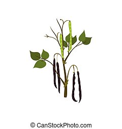 Flat vector icon of green kidney bean. Flowering leguminous plant with long pods. Agricultural crop