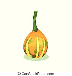 Cartoon icon of orange pumpkin with yellow stripes and green stem. Small round gourd. Natural and healthy product. Agricultural plant. Colorful flat vector illustration isolated on white background.