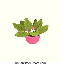 Flat vector icon of viola plant in bright pink pot. Houseplant with small blooming flowers and green leaves. Natural home decor element